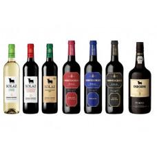 Osborne Wine Launching and Tasting
